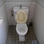 既設 トイレ